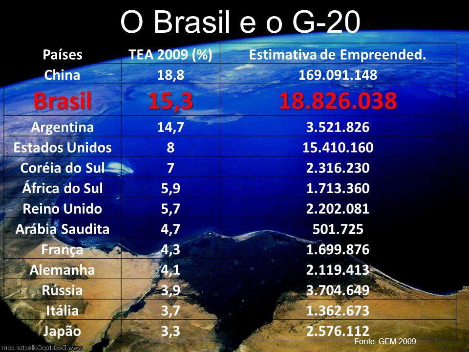 O Brasil e o G-20 PaísesTEA 2009 (%)Estimativa de Empreended. China18,8169.091.148 Brasil15,318.826.038 Argentina14,73.521.826 Estados Unidos815.410.1