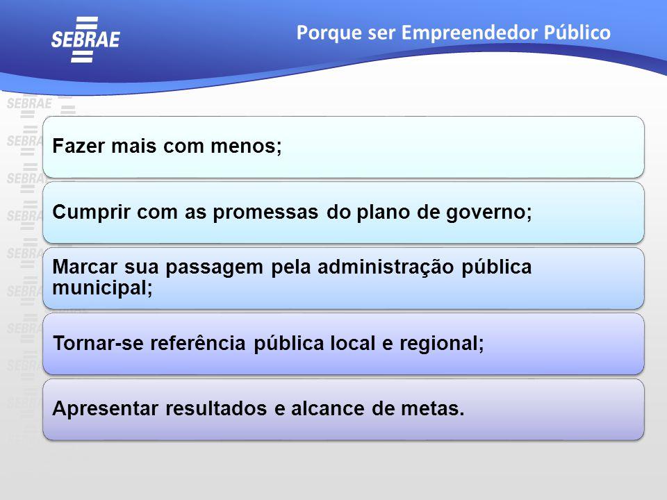 Fazer mais com menos;Cumprir com as promessas do plano de governo; Marcar sua passagem pela administração pública municipal; Tornar-se referência públ