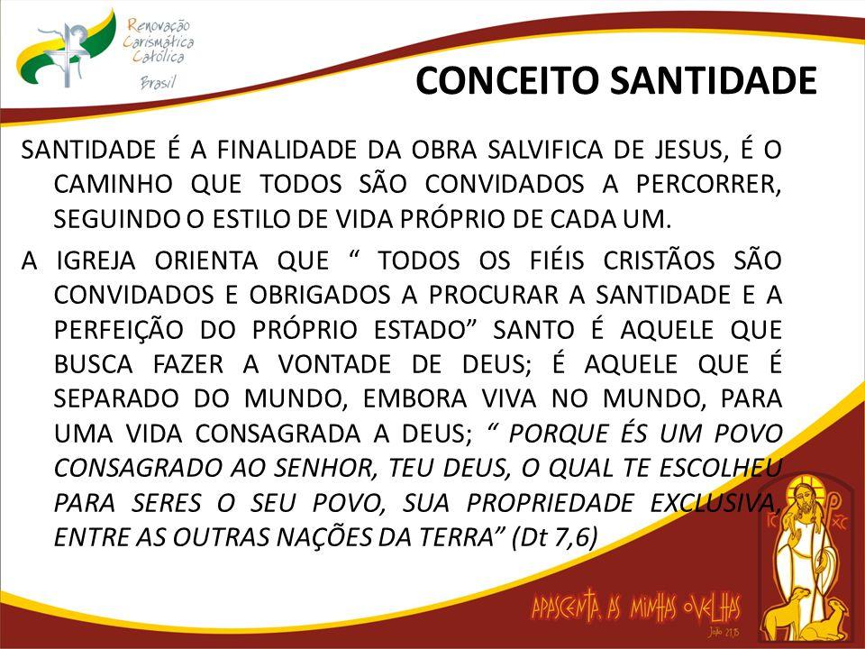 CONCEITO SANTIDADE SANTIDADE É A FINALIDADE DA OBRA SALVIFICA DE JESUS, É O CAMINHO QUE TODOS SÃO CONVIDADOS A PERCORRER, SEGUINDO O ESTILO DE VIDA PR
