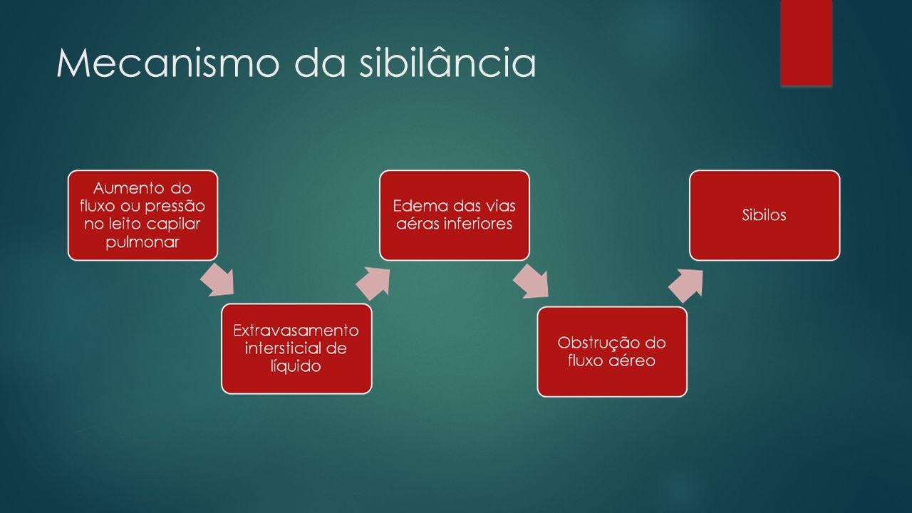 Mecanismo da sibilância
