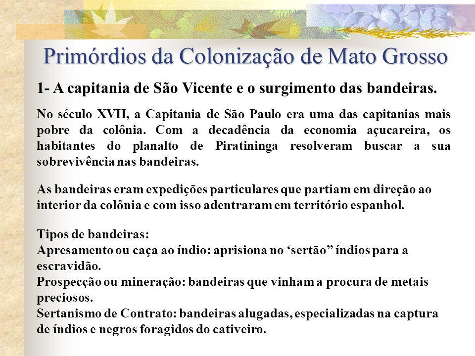 1- A capitania de São Vicente e o surgimento das bandeiras.