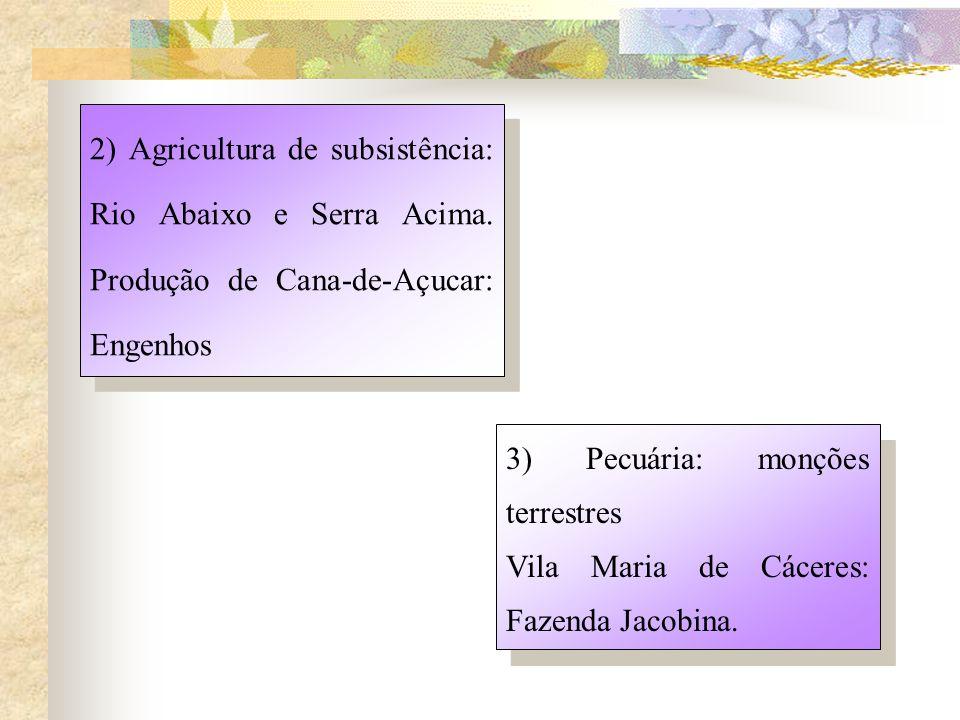 2) Agricultura de subsistência: Rio Abaixo e Serra Acima.