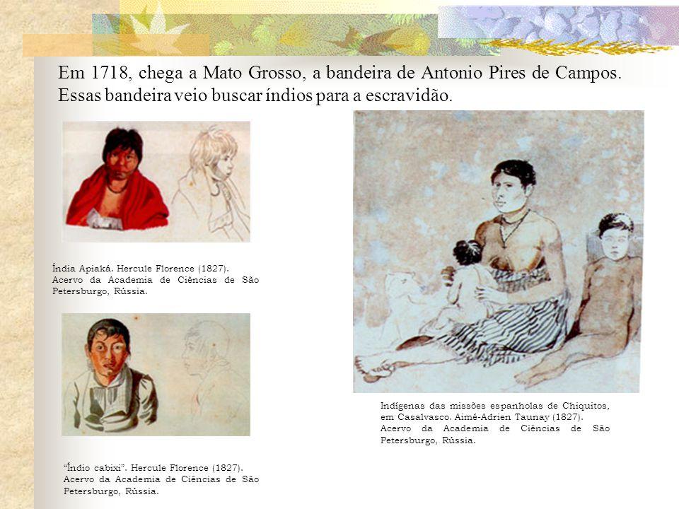 Em 1718, chega a Mato Grosso, a bandeira de Antonio Pires de Campos.