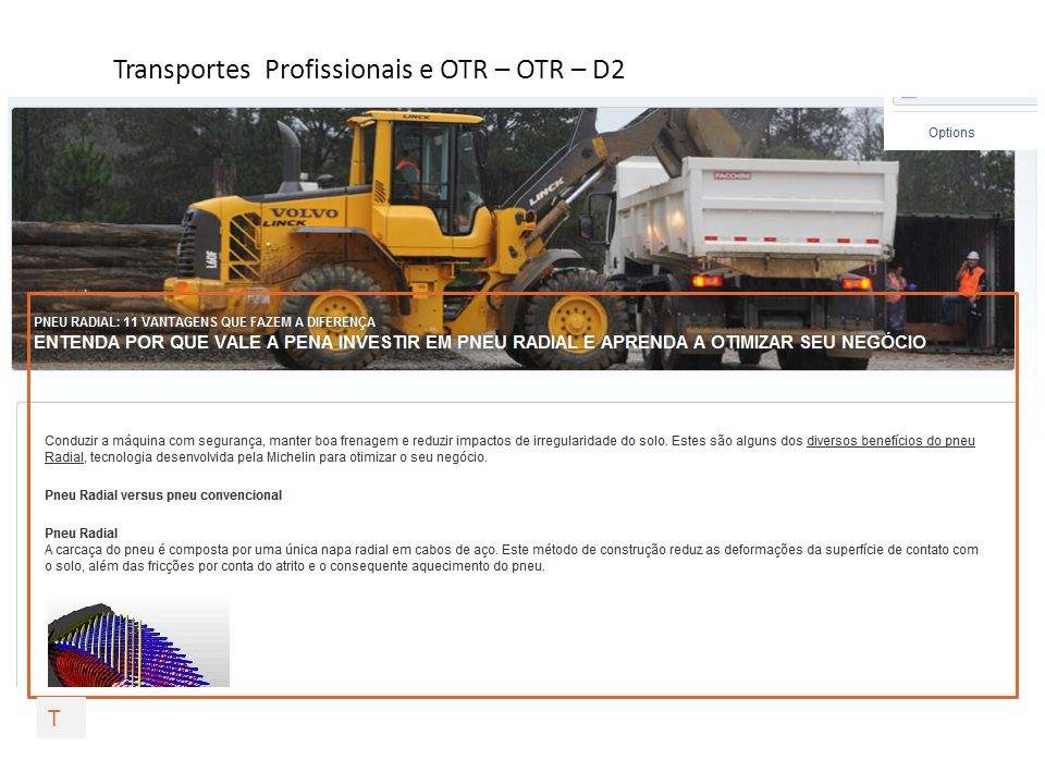 Transportes Profissionais e OTR – OTR – D3 T
