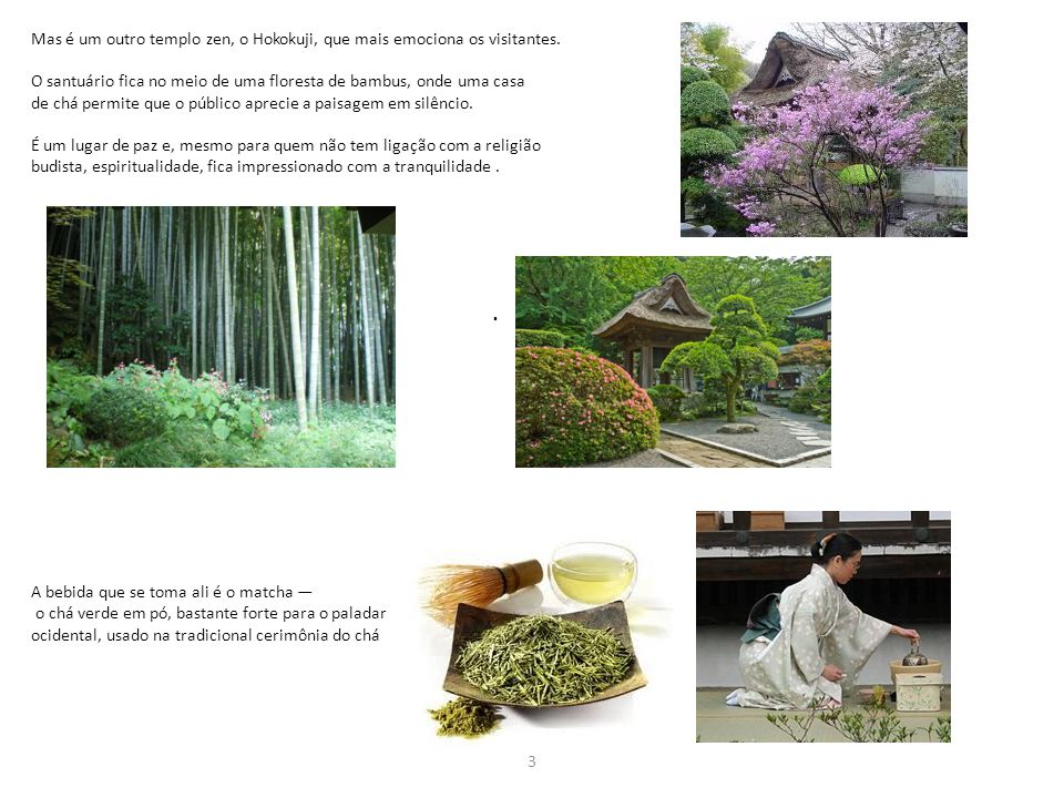 Mas é um outro templo zen, o Hokokuji, que mais emociona os visitantes. O santuário fica no meio de uma floresta de bambus, onde uma casa de chá permi