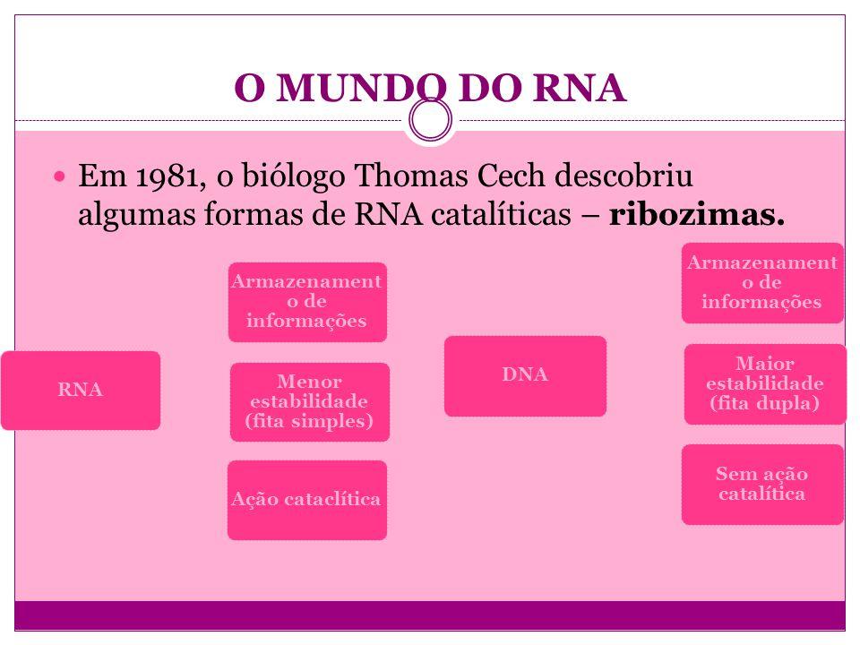O MUNDO DO RNA Em 1981, o biólogo Thomas Cech descobriu algumas formas de RNA catalíticas – ribozimas. RNA Armazenament o de informações Menor estabil