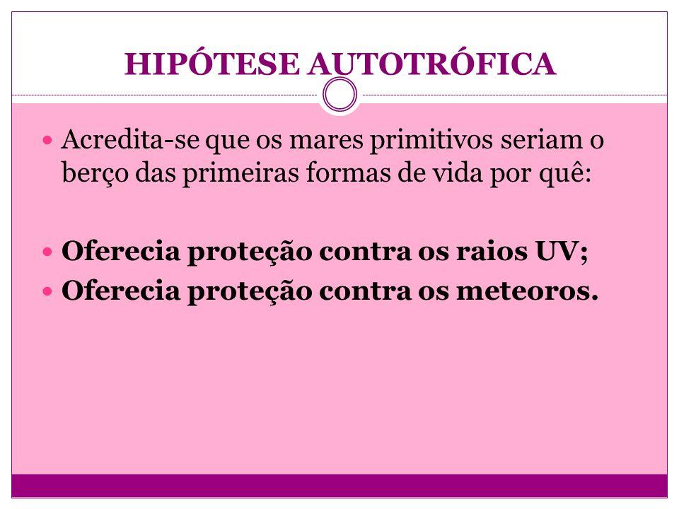 HIPÓTESE AUTOTRÓFICA Acredita-se que os mares primitivos seriam o berço das primeiras formas de vida por quê: Oferecia proteção contra os raios UV; Of
