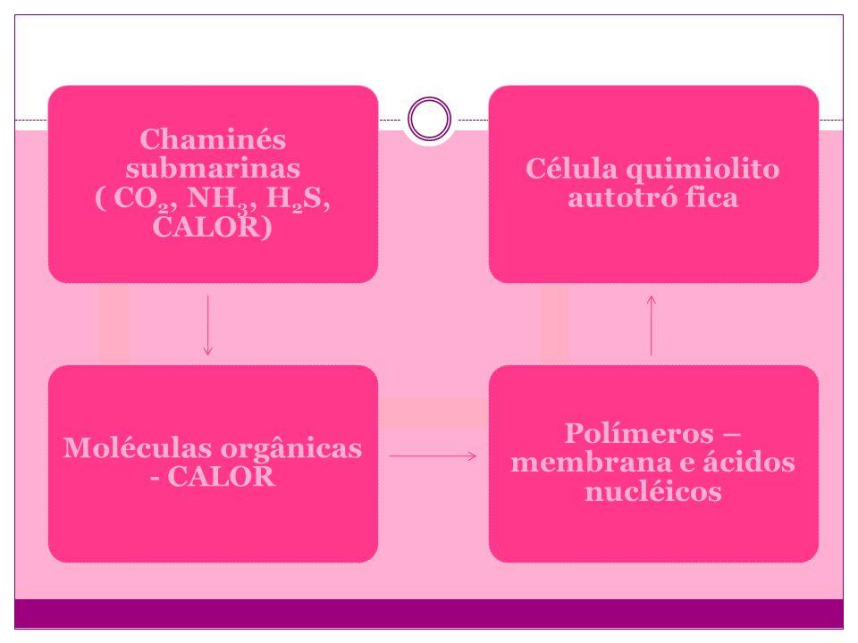 Chaminés submarinas ( CO2, NH3, H 2 S, CALOR) Moléculas orgânicas - CALOR Polímeros – membrana e ácidos nucléicos Célula quimiolito autotró fica