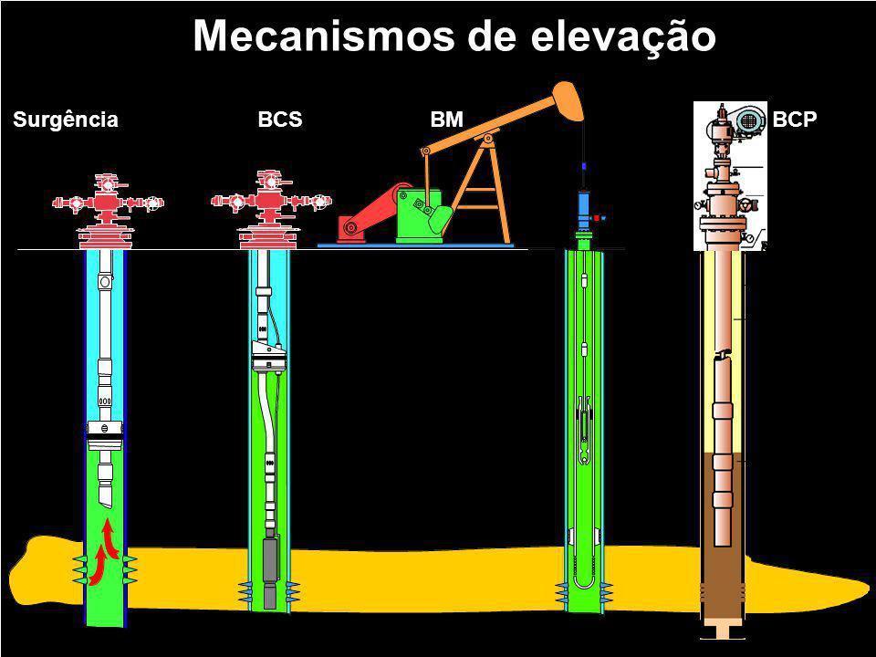 Mecanismos de elevação Surgência natural BCS BM BCP
