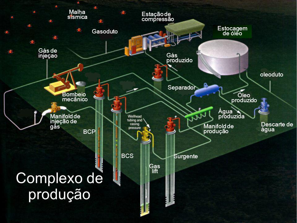 Estocagem de óleo Malha sísmica Gas lift BCS Manifold de injeção de gás Surgente Bombeio mecânico Gás de injeçao Gasoduto Estação de compressão BCP Gás produzido Descarte de água Separador Água produzida Manifold de produção Óleo produzido oleoduto Complexo de produção