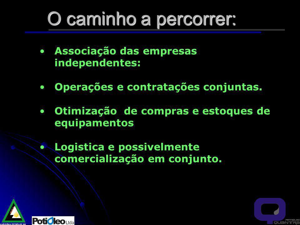 O caminho a percorrer: Associação das empresas independentes: Operações e contratações conjuntas.
