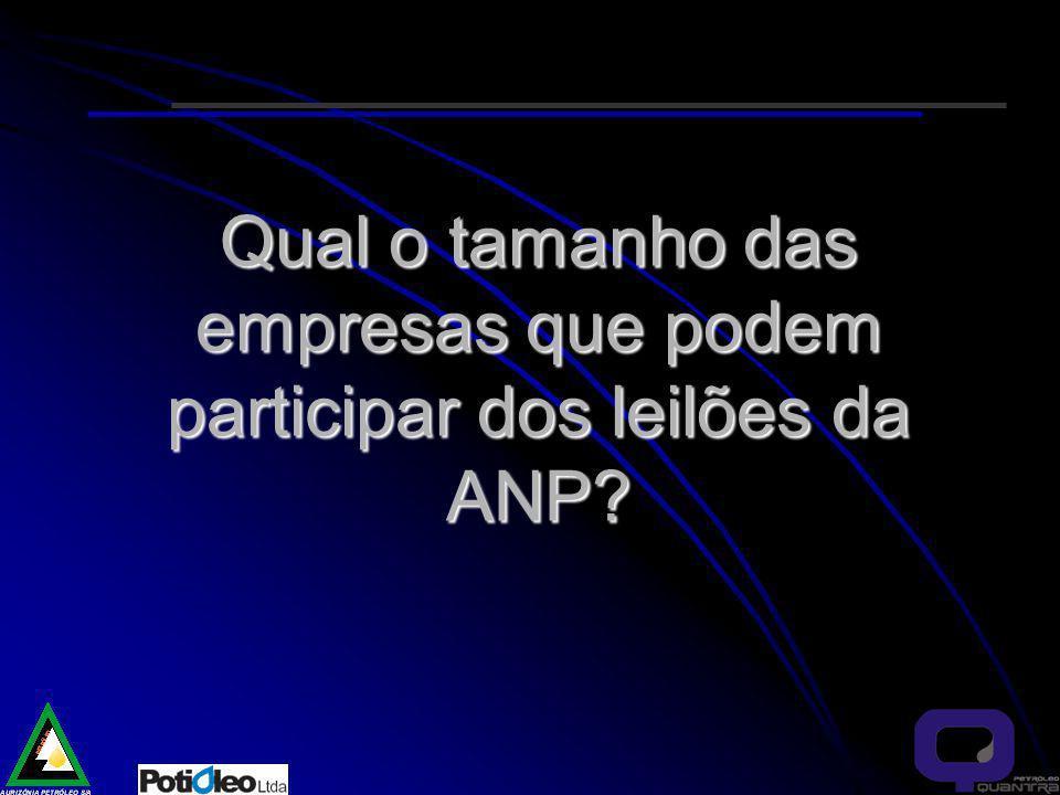 Qual o tamanho das empresas que podem participar dos leilões da ANP?