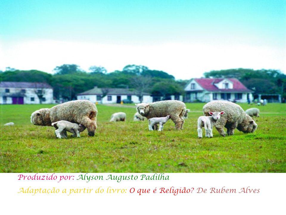 Produzido por: Alyson Augusto Padilha Adaptação a partir do livro: O que é Religião? De Rubem Alves
