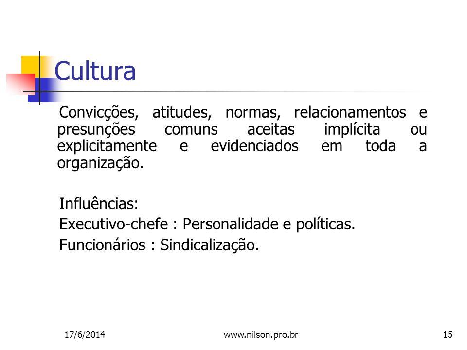 15 Cultura Convicções, atitudes, normas, relacionamentos e presunções comuns aceitas implícita ou explicitamente e evidenciados em toda a organização.