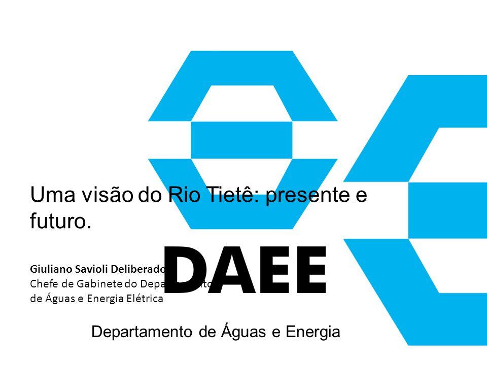 Departamento de Águas e Energia Elétrica Uma visão do Rio Tietê: presente e futuro. Giuliano Savioli Deliberador Chefe de Gabinete do Departamento de
