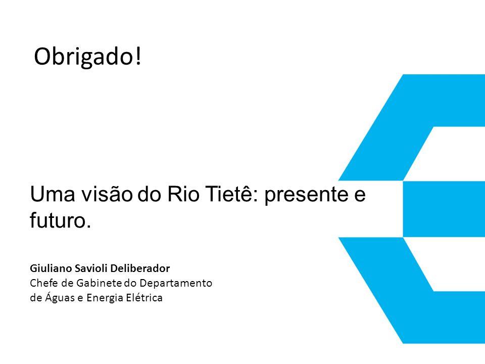 Uma visão do Rio Tietê: presente e futuro. Giuliano Savioli Deliberador Chefe de Gabinete do Departamento de Águas e Energia Elétrica Obrigado!