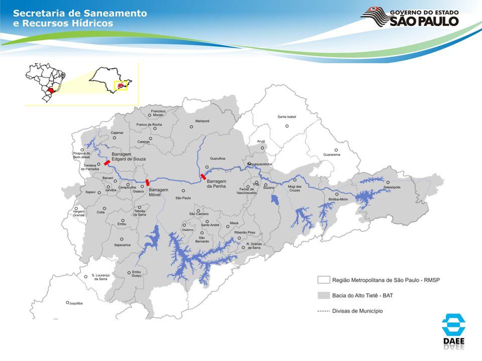 Paisagismo Já o paisagismo da marginal Tietê, tem cerca de 50 km de extensão (25 km em cada margem do rio) e foi implantado em 2007.