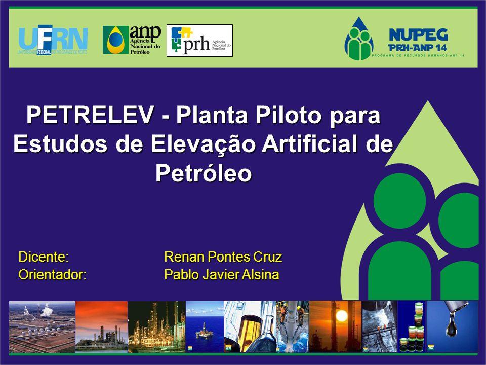 Dicente: Renan Pontes Cruz Orientador: Pablo Javier Alsina PETRELEV - Planta Piloto para Estudos de Elevação Artificial de Petróleo