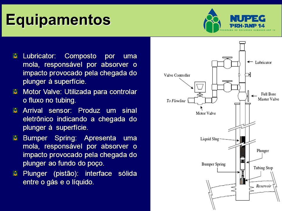 Equipamentos Lubricator: Composto por uma mola, responsável por absorver o impacto provocado pela chegada do plunger à superfície. Motor Valve: Utiliz