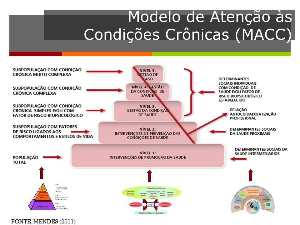 utilização como ferramenta de suporte para o diagnóstico, adequação, monitoramento e avaliação de modelos de atenção às condições crônicas.
