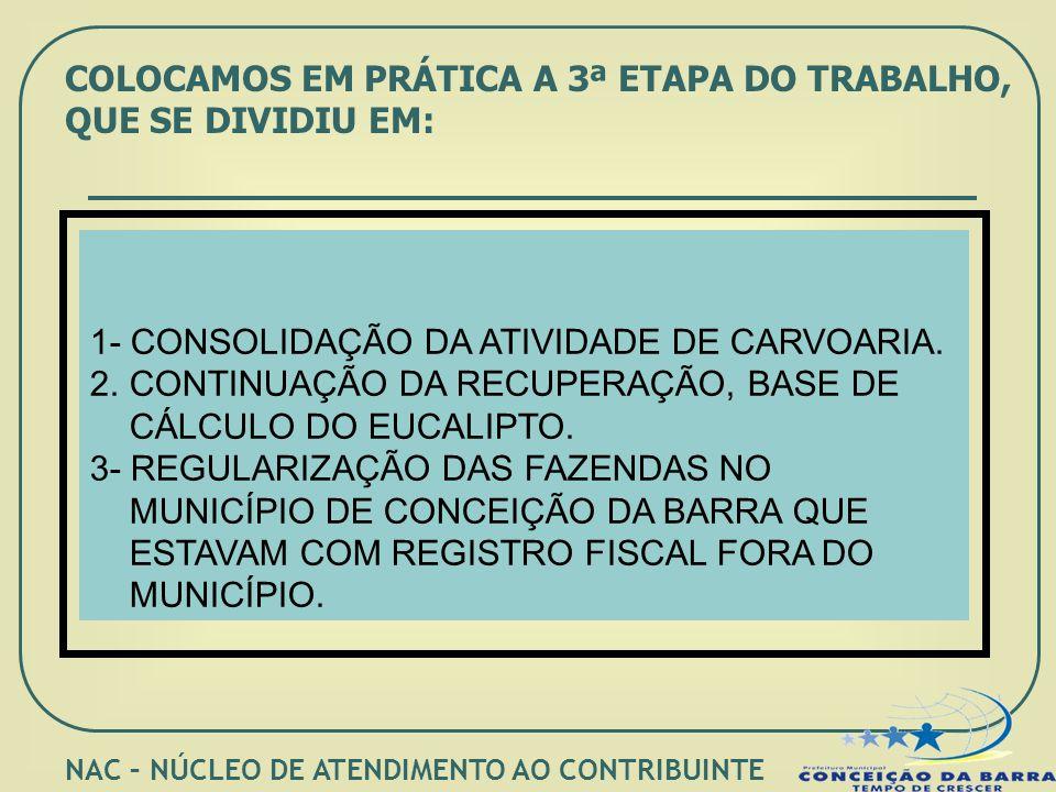 COLOCAMOS EM PRÁTICA A 3ª ETAPA DO TRABALHO, QUE SE DIVIDIU EM: 1- CONSOLIDAÇÃO DA ATIVIDADE DE CARVOARIA. 2.CONTINUAÇÃO DA RECUPERAÇÃO, BASE DE CÁLCU