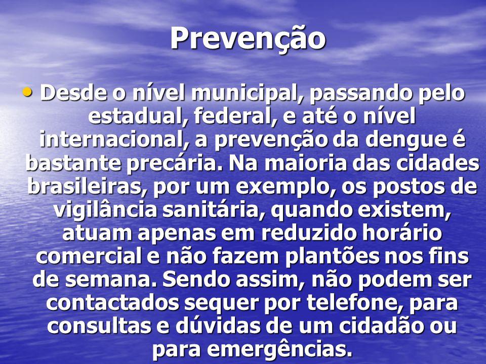 Prevenção Desde o nível municipal, passando pelo estadual, federal, e até o nível internacional, a prevenção da dengue é bastante precária. Na maioria