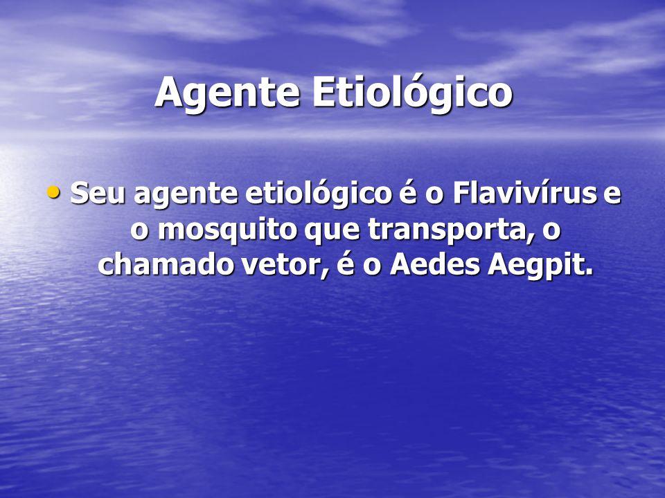 Agente Etiológico Seu agente etiológico é o Flavivírus e o mosquito que transporta, o chamado vetor, é o Aedes Aegpit. Seu agente etiológico é o Flavi