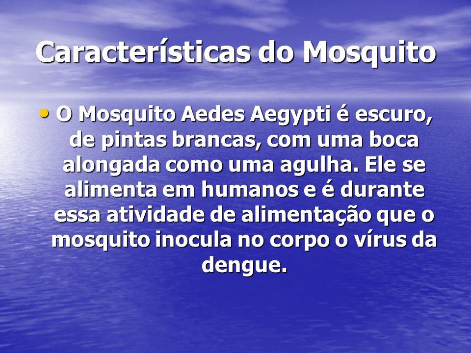 Características do Mosquito O Mosquito Aedes Aegypti é escuro, de pintas brancas, com uma boca alongada como uma agulha. Ele se alimenta em humanos e