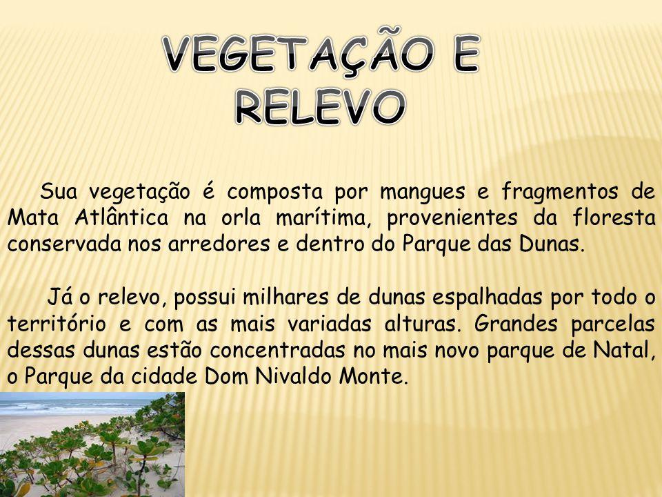 Sua vegetação é composta por mangues e fragmentos de Mata Atlântica na orla marítima, provenientes da floresta conservada nos arredores e dentro do Pa