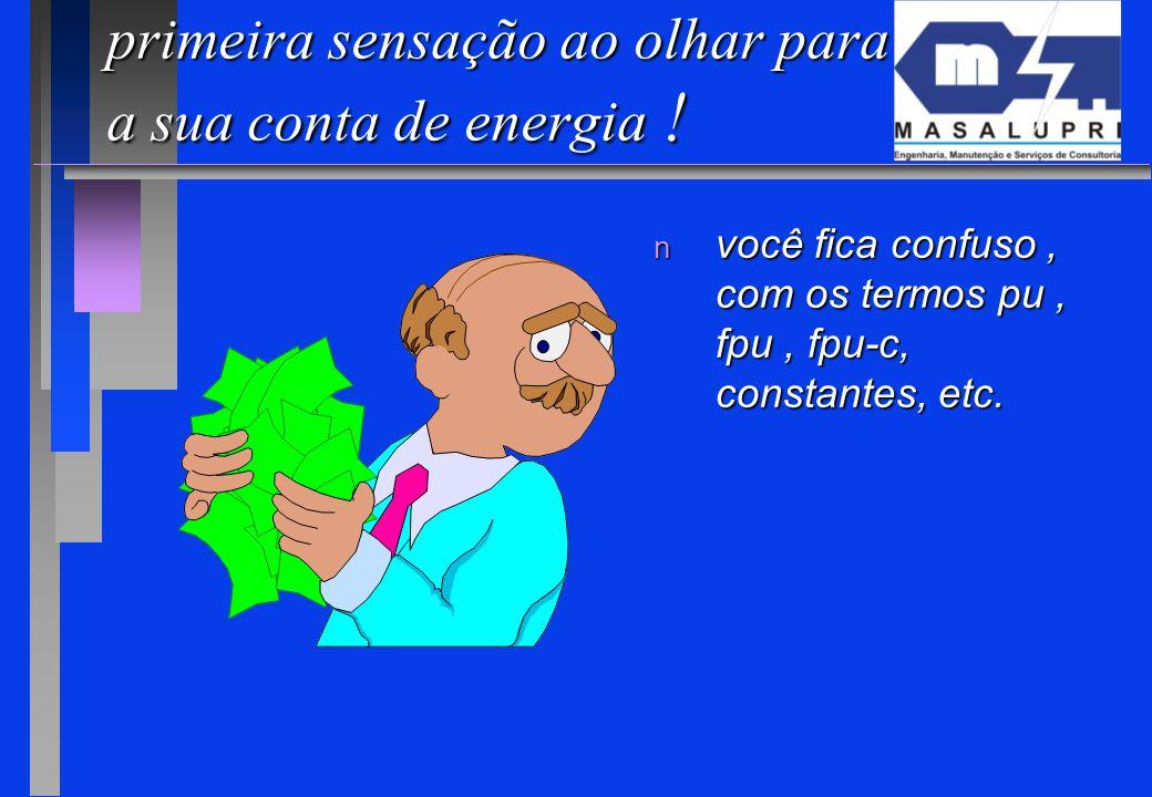 primeira sensação ao olhar para a sua conta de energia ! n você fica confuso, com os termos pu, fpu, fpu-c, constantes, etc.