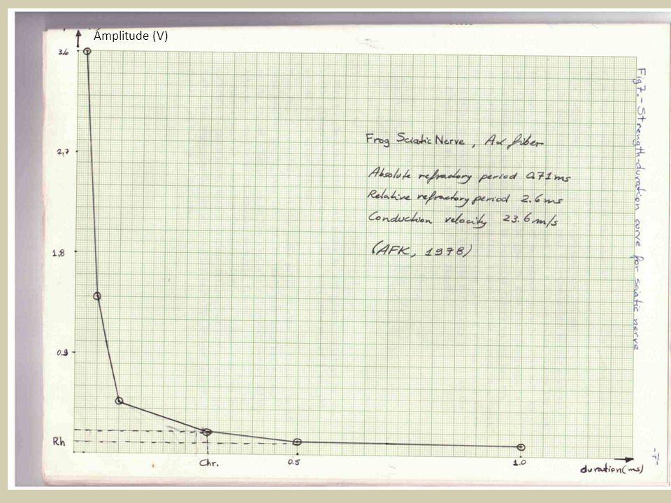 τ=0,01s R=100.000Ω V L =0,03 V Capacitância específica da membrana C m (μF/cm 2 ) Resistência específica da membrana R m (Ωcm 2 ) constante de tempo da membrana não depende da área considerada (observação apontada por Lapicque)