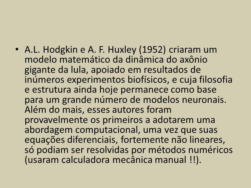 A.L. Hodgkin e A. F. Huxley (1952) criaram um modelo matemático da dinâmica do axônio gigante da lula, apoiado em resultados de inúmeros experimentos