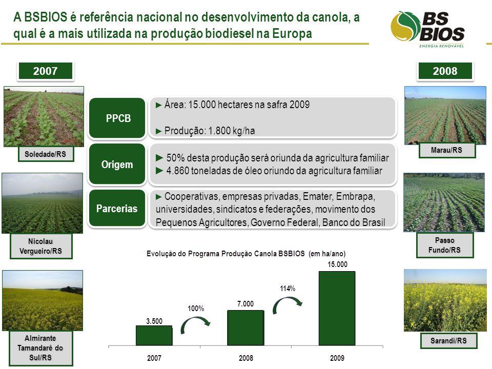 A BSBIOS é referência nacional no desenvolvimento da canola, a qual é a mais utilizada na produção biodiesel na Europa Almirante Tamandaré do Sul/RS Nicolau Vergueiro/RS Soledade/RS Passo Fundo/RS Sarandi/RS Marau/RS 2007 2008 Área: 15.000 hectares na safra 2009 Produção: 1.800 kg/ha Área: 15.000 hectares na safra 2009 Produção: 1.800 kg/ha 50% desta produção será oriunda da agricultura familiar 4.860 toneladas de óleo oriundo da agricultura familiar 50% desta produção será oriunda da agricultura familiar 4.860 toneladas de óleo oriundo da agricultura familiar Cooperativas, empresas privadas, Emater, Embrapa, universidades, sindicatos e federações, movimento dos Pequenos Agricultores, Governo Federal, Banco do Brasil Origem PPCB Parcerias