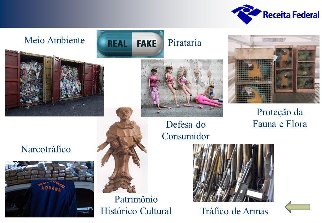 Meio Ambiente Narcotráfico Tráfico de Armas Pirataria Proteção da Fauna e Flora Patrimônio Histórico Cultural Defesa do Consumidor