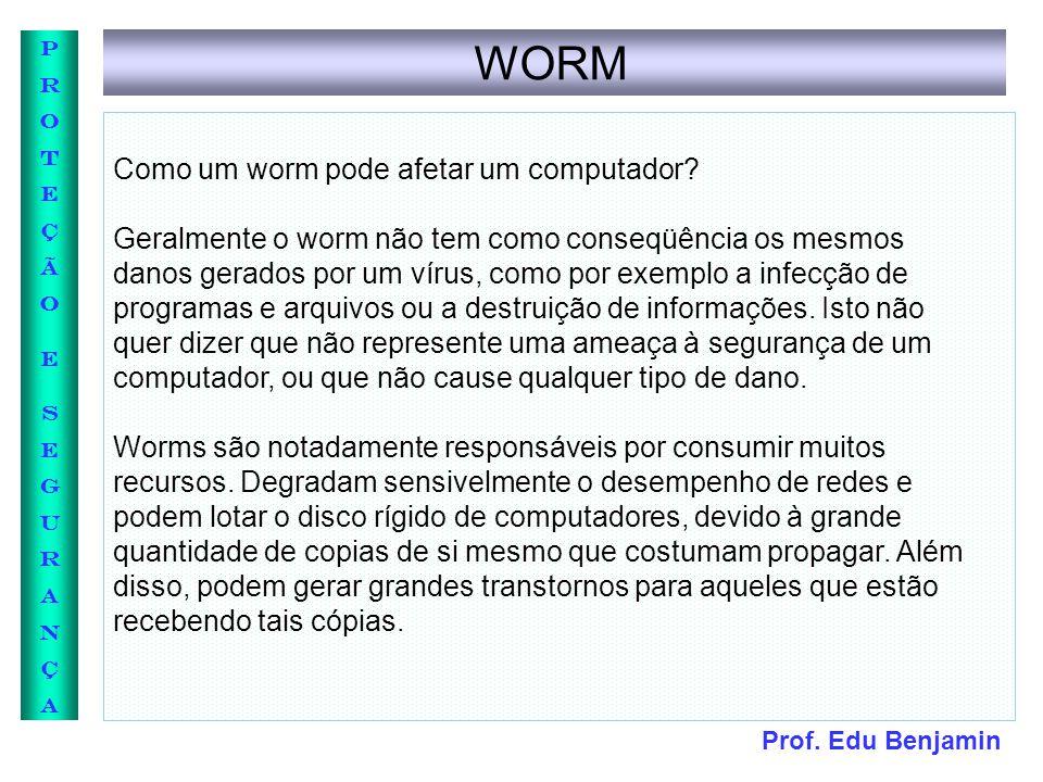 Prof. Edu Benjamin PROTEÇÃOESEGURANÇAPROTEÇÃOESEGURANÇA WORM Como um worm pode afetar um computador? Geralmente o worm não tem como conseqüência os me