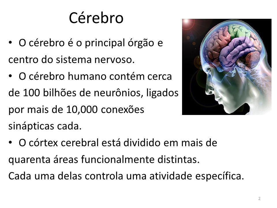 Consciência A palavra consciência, de origem latina, é composta pelo prefixo con (com) + scientia (conhecimento, ciência).