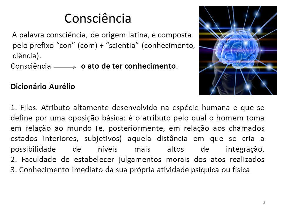 Algumas Considerações O cérebro de cada ser humano é especial e corresponde a uma consciência individual única.
