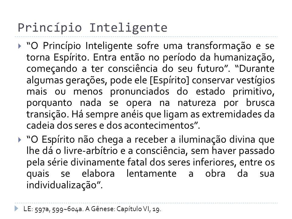 Princípio Inteligente O Princípio Inteligente sofre uma transformação e se torna Espírito. Entra então no período da humanização, começando a ter cons