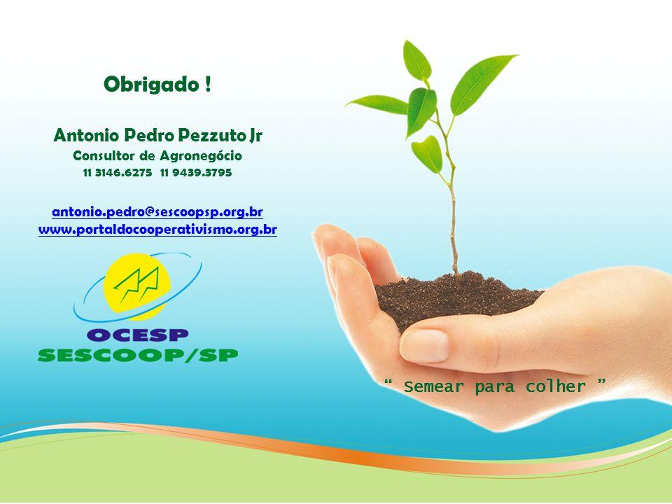 Obrigado ! Antonio Pedro Pezzuto Jr Consultor de Agronegócio 11 3146.6275 11 9439.3795 antonio.pedro@sescoopsp.org.br www.portaldocooperativismo.org.b