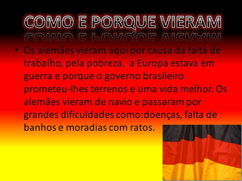 Os alemães vieram aqui por causa da falta de trabalho, pela pobreza, a Europa estava em guerra e porque o governo brasileiro prometeu-lhes terrenos e