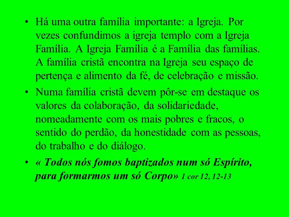 Há uma outra família importante: a Igreja. Por vezes confundimos a igreja templo com a Igreja Família. A Igreja Família é a Família das famílias. A fa