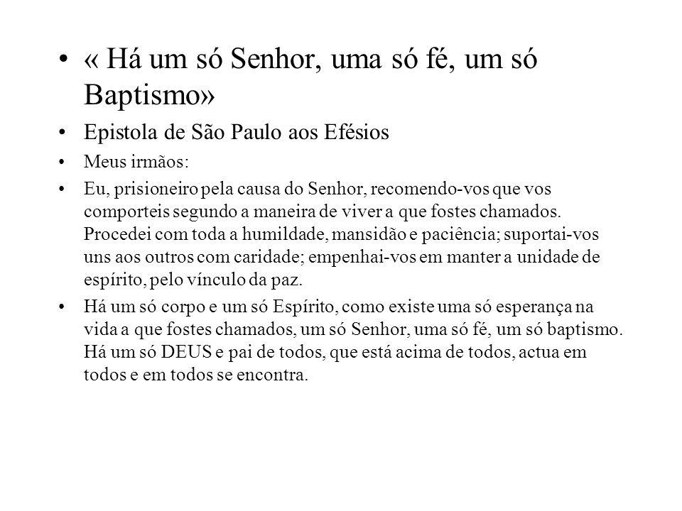 « Há um só Senhor, uma só fé, um só Baptismo» Epistola de São Paulo aos Efésios Meus irmãos: Eu, prisioneiro pela causa do Senhor, recomendo-vos que v