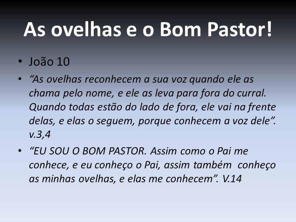 As ovelhas e o Bom Pastor! João 10 As ovelhas reconhecem a sua voz quando ele as chama pelo nome, e ele as leva para fora do curral. Quando todas estã