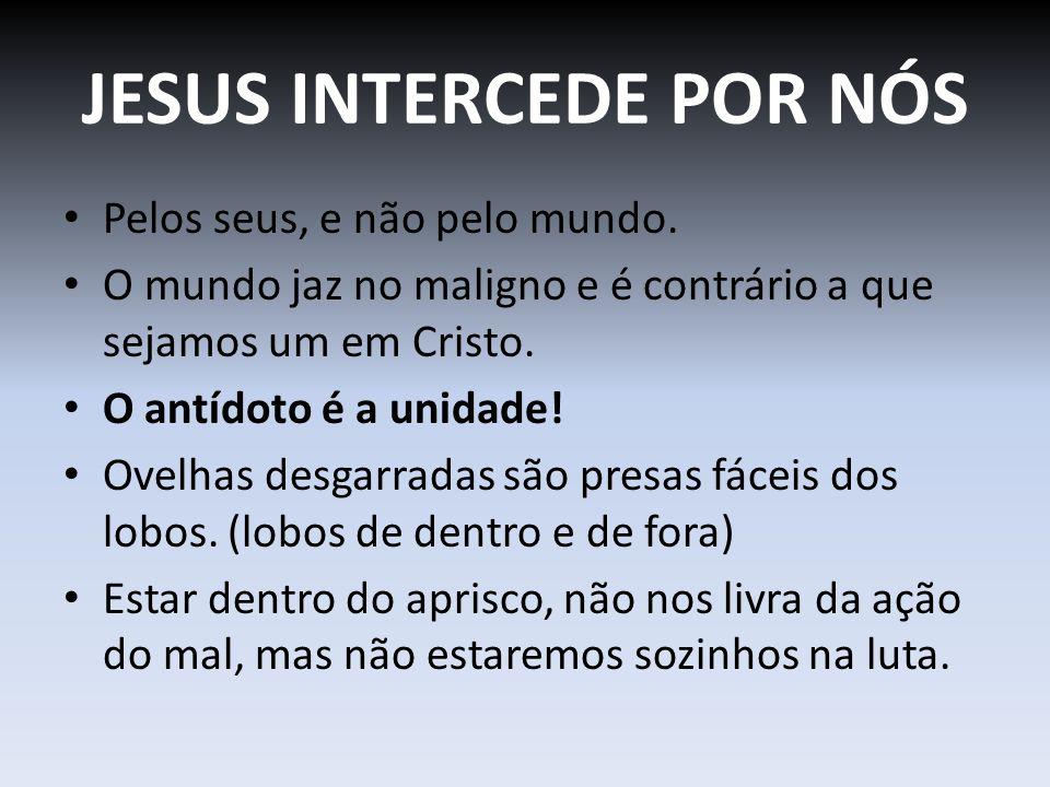 JESUS INTERCEDE POR NÓS Pelos seus, e não pelo mundo. O mundo jaz no maligno e é contrário a que sejamos um em Cristo. O antídoto é a unidade! Ovelhas