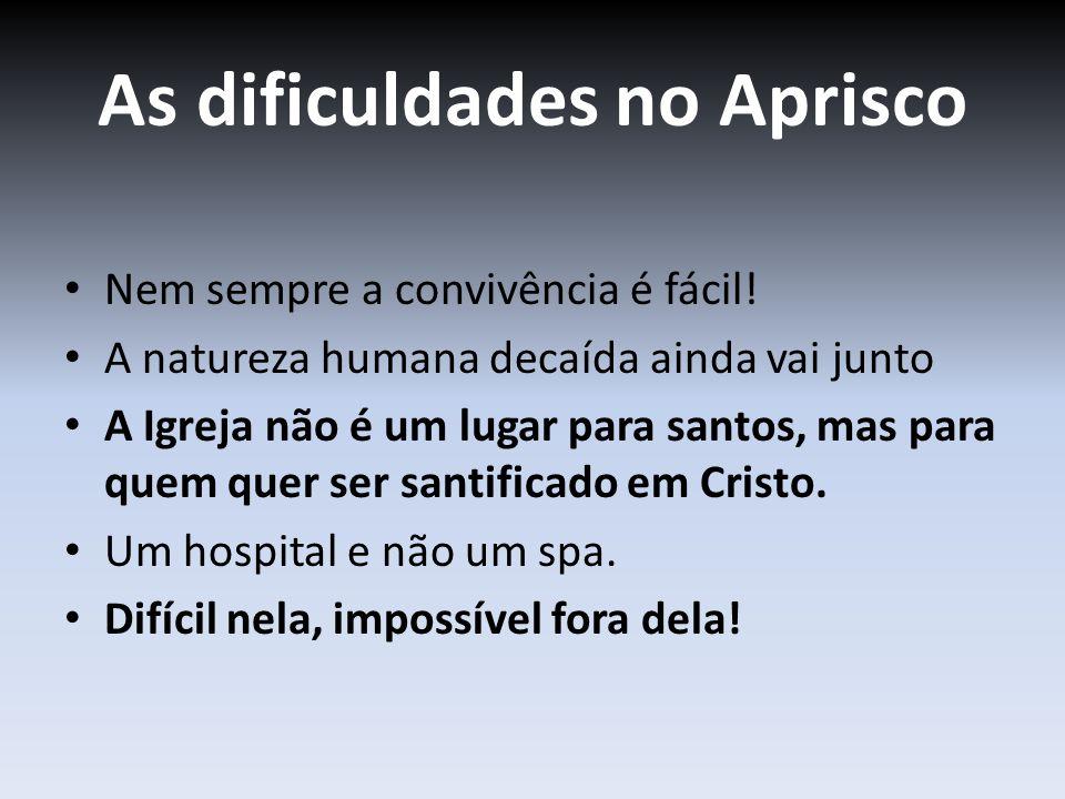 As dificuldades no Aprisco Nem sempre a convivência é fácil! A natureza humana decaída ainda vai junto A Igreja não é um lugar para santos, mas para q