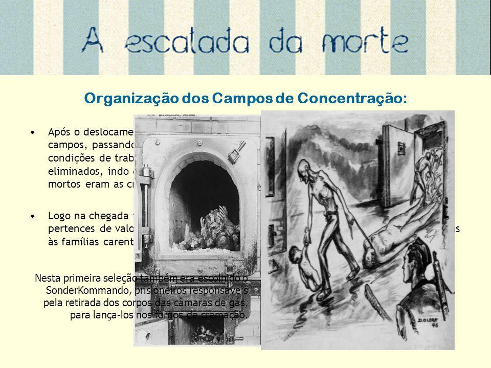 Organização dos Campos de Concentração: Após o deslocamento por meio de trens as populações eram encaminhadas para os campos, passando por uma seleção