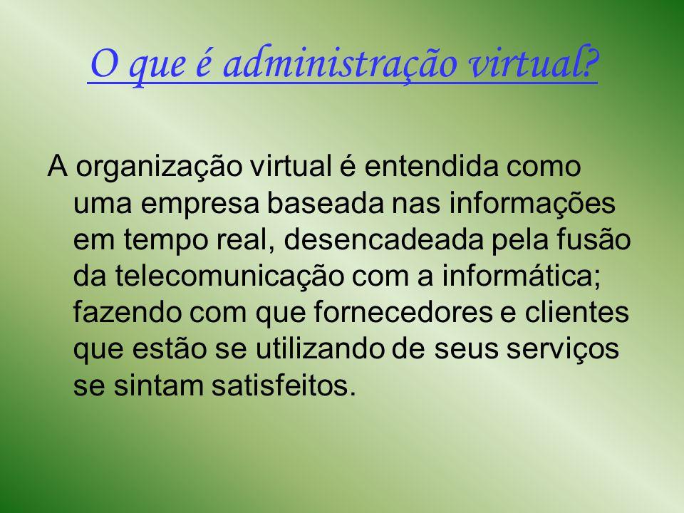 Os quatro tipos de administradores virtuais 1º: Os Pioneiros: desenvolvem novos produtos e criam mercados completamente novos, tais como comércio eletrônico, softwares específicos.
