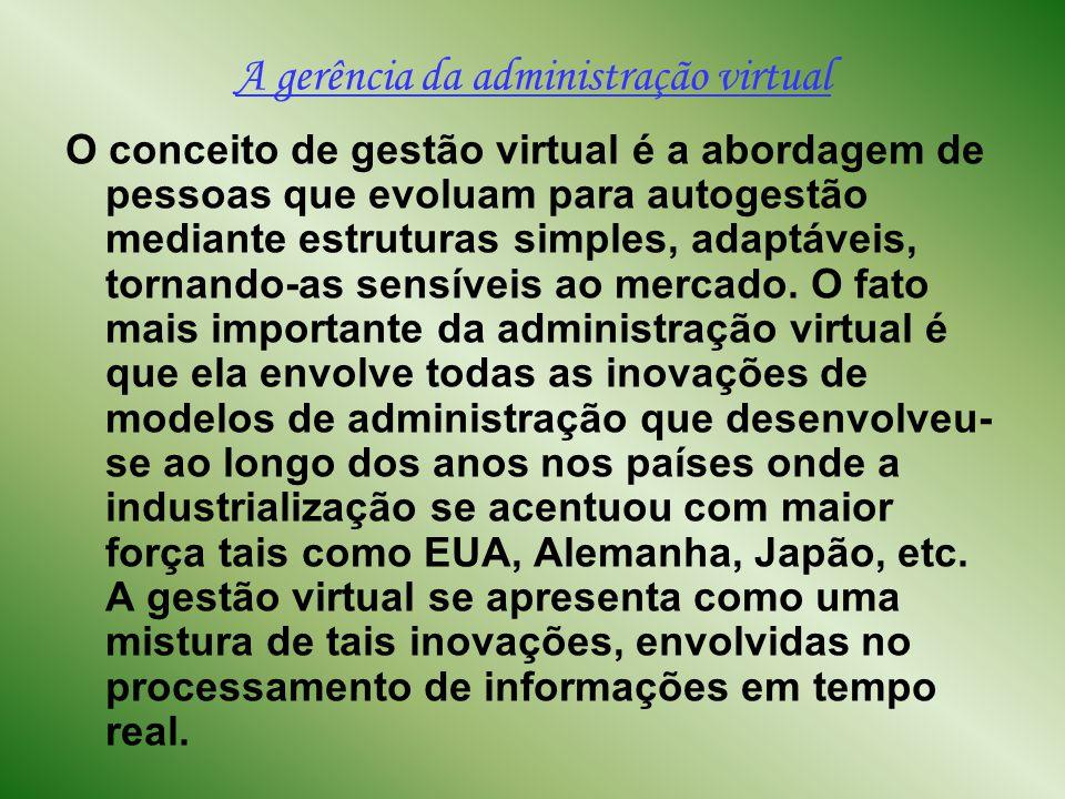 A gerência da administração virtual No que tange à gerência, não se encontra muitas diferenças entre a gerência normal e a virtual, vez que o primordial objetivo de ambas é obter resultados.