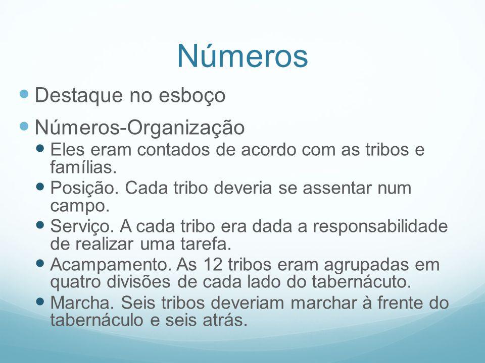 Números Destaque no esboço Números-Organização Eles eram contados de acordo com as tribos e famílias. Posição. Cada tribo deveria se assentar num camp