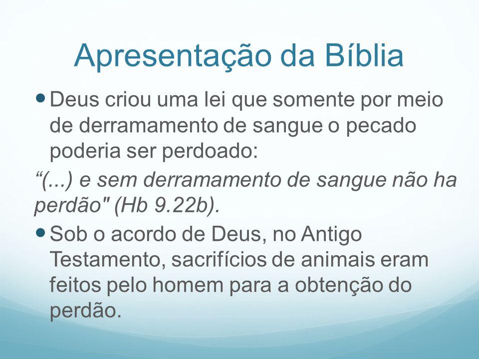 Apresentação da Bíblia Deus criou uma lei que somente por meio de derramamento de sangue o pecado poderia ser perdoado: (...) e sem derramamento de sa